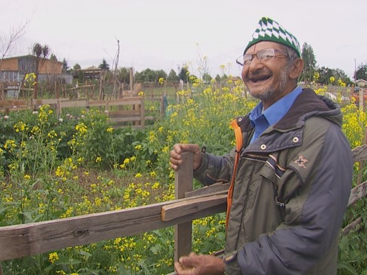 Two acres of parking lot turned into a community farm.